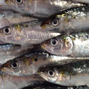 sardines a la planxa