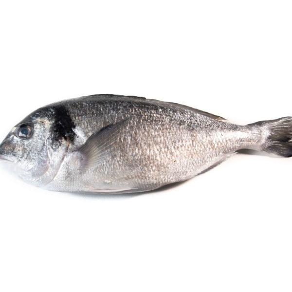 peix blanc blanco marisco marisc peix pescado pescadores pescadors proximitat proximidad online casa domicilio temporada directo platjeta entrega facil local slowfood
